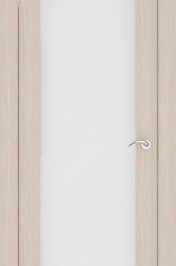 Дверь ПО S10
