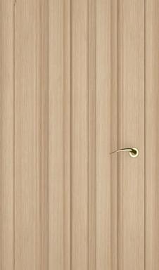Дверь TLC-P ZaFlex